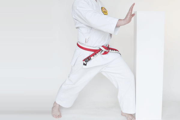 dance-story-karate
