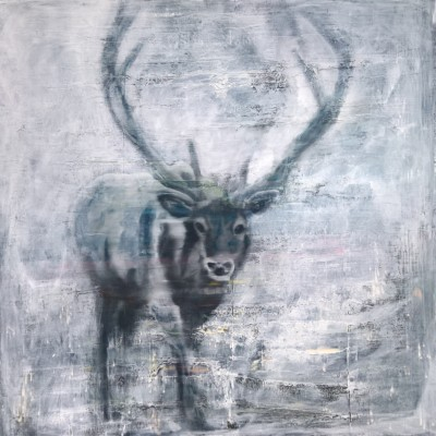 glimmer elk