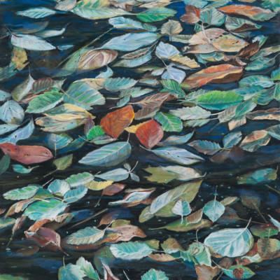 Leaves on a Pond