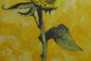 Sunflower Ascension