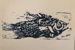 Andy Friedlander Rockfish