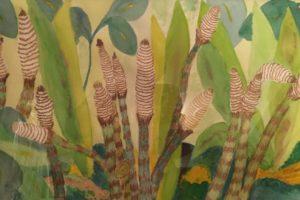 P.Stigliani Horsetail Ferns