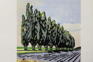 Trees-Along-Best-Road-Skagit-Valley