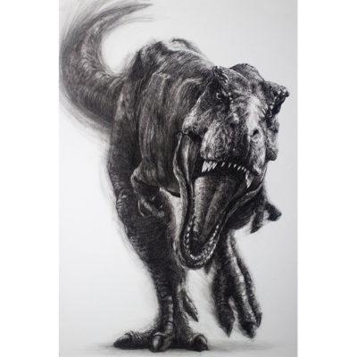 Chris Beaven, Tyrannosaurus 800x800