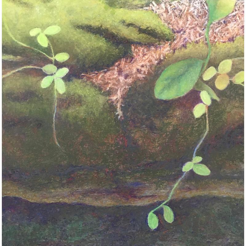 Faulkner-Kathleen-Forest Life