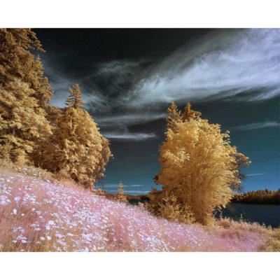 Jeff Aspnes, Between Dreams 800x800