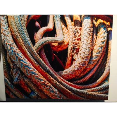 Robert LeGrand, One Mile Deep Survivors 800x800