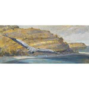 Kammer Gliding Great Blue Heron