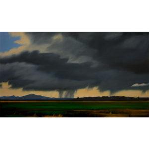 Lisa McShane_Storm across the Flats