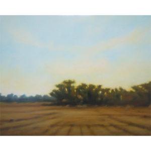 Lisa McShane_Summer-Field