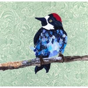 Hemirch Acorn Woodpecker