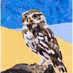Hemrich Burrowing Owl