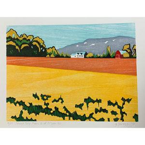 Jaress, Skagit-Tulip-Fields-N-of-McLean-Rd
