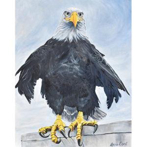 Lorna Libert_Eagle Eyes